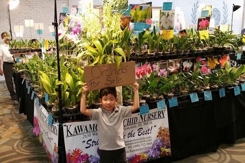 Kawamoto Orchid Nursery Front